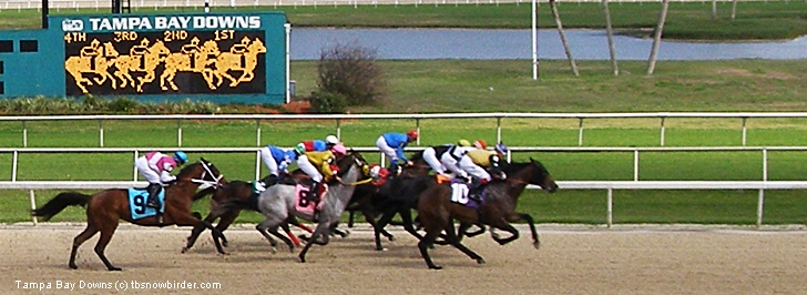 Tampa Bay Downs Horse Racing ticket prices and times></td>