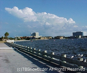 Courtney Campbell Causeway Tampa Bay